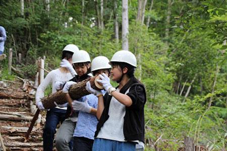 s1サマーキャンプ3日目林業体験2